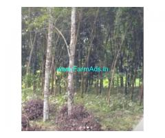 114 Cents Agriculture Land For Sale In Chenganur