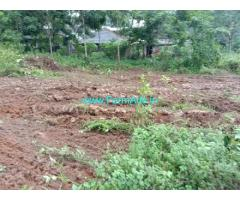 60 cents Farm Land For Sale In Thirparappu