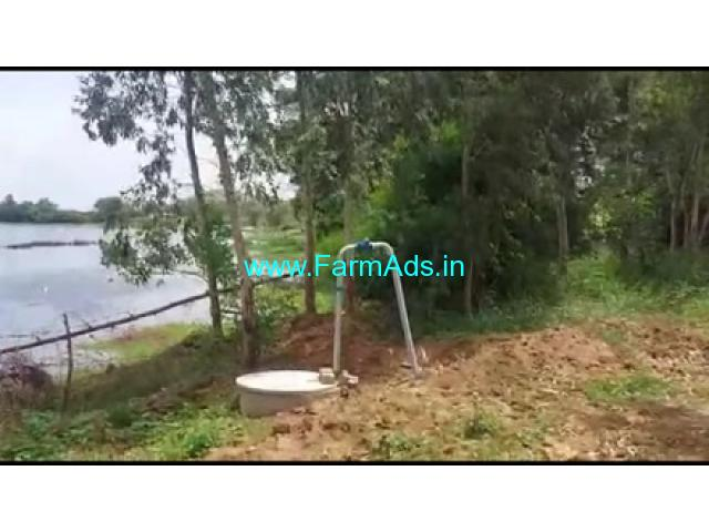 10 Acres 10 Gunta Agriculture Land For Sale In Saraguru