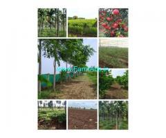10 Acres Agriculture Land For Sale In Hiriyur near Gayathri Dam