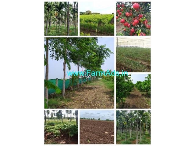 10 Acres Farm Land For Sale In Aaranakatte