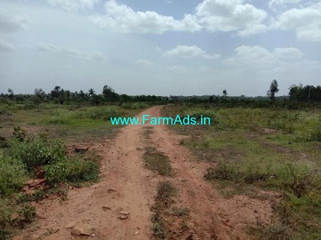 6 Acres 30 Gunte Farm Land For Sale In Doddaballapur