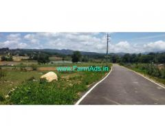 33 Acres Agriculture Land For Sale In Chikkamagaluru