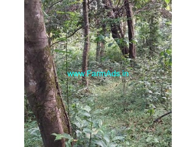30 Acres Agriculture Land For Sale In Sakleshpura