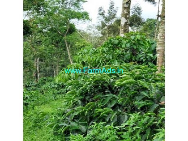 8 Acres Farm Land For Sale In Belur