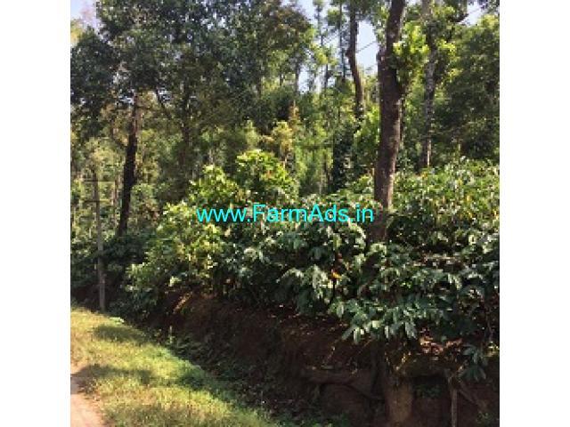 3 Acres Agriculture Land For Sale In Sakleshpura