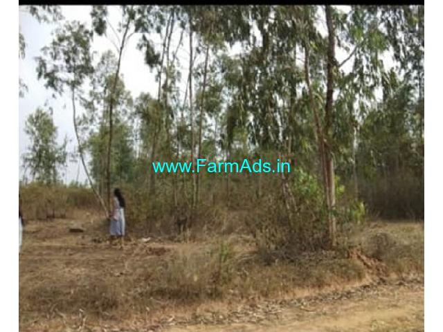 2 Acres Farm Land For Sale In Nelamangala