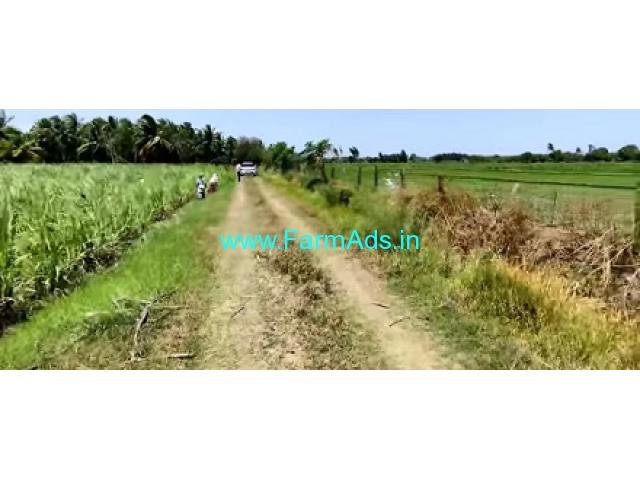 52 Acres Agriculture Land For Sale In Tirukalukundram