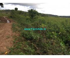 2 Acres Agriculture Land For Sale In Chikkamagaluru