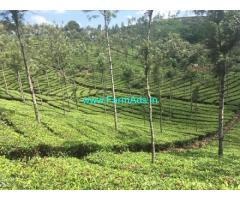 2470 acres of  Well managed Estate for sale in Idukki
