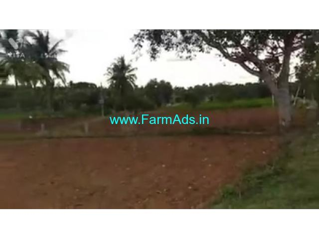 1 Acre 30 Gunta Farm Land For Sale In Kanakapur