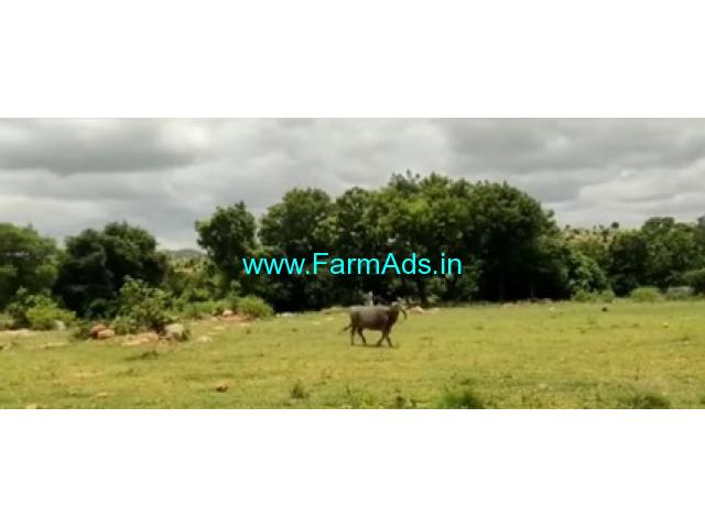 25 Acres Farm Land For Sale In Anantapur