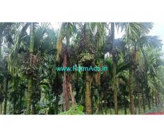 4 acres well maintained Arecanut Farm for Sale at Karkala