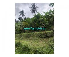 3 Acres Farm Land For Sale In Kaithappoyil