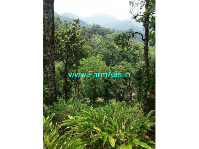 25 Acres Agriculture Land For Sale In Meppadi