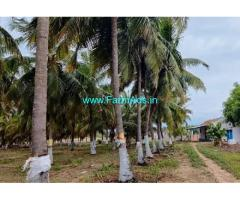2.21 Acres Agriculture Land For Sale In Kudimangalam
