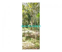 66 Cent Farm Land For Sale In Nellimukku