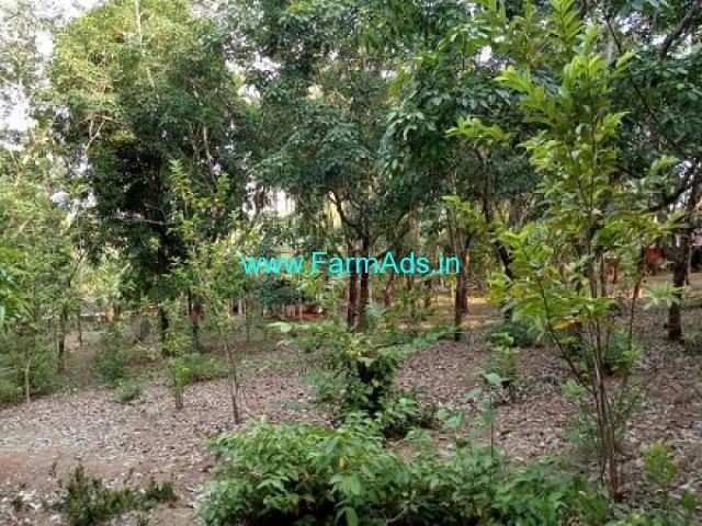 6.50 acres Agriculture land for sale in Kakkepadavu
