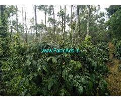 3.5 acre Robusta plantation sale in Chikmagalur