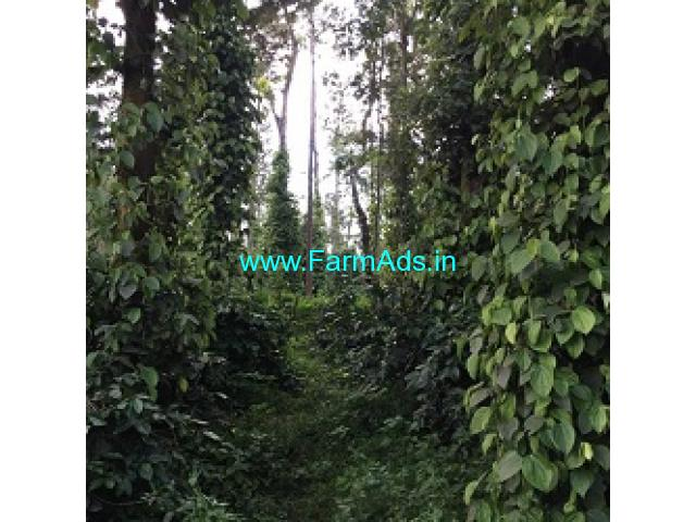 6 Acres Farm Land For Sale In Mudigere