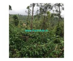3.5 Acre Agriculture Land For Sale In Mudigere