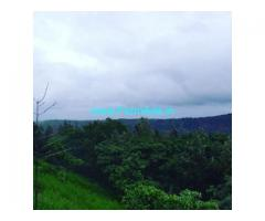 15 Acers Farm Land For Sale In Mudigere