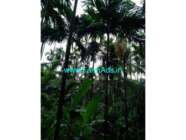 5 Acres Agriculture Land For Sale In Kukkesubramanya