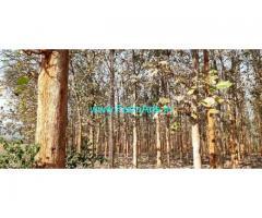 43 Acres Farm Land For Sale In Shikaripura