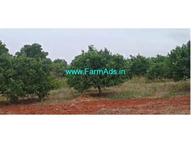 4 Acres Agriculture Land For Sale In Tadimarri