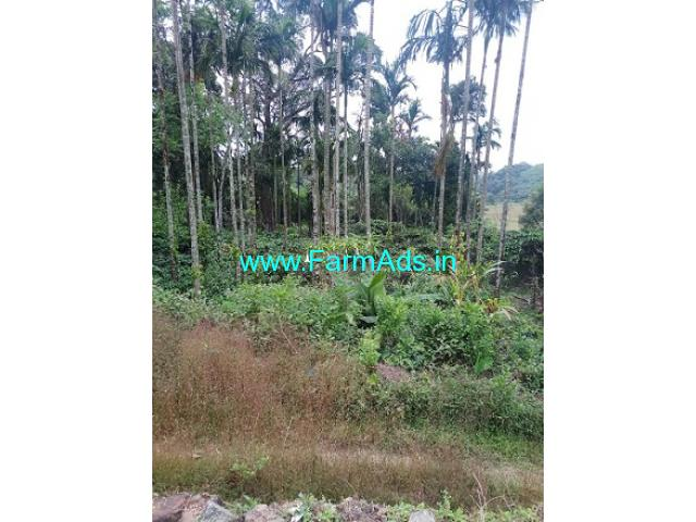 1.12 Guntas Agriculture Land For Sale In Mudigere