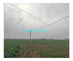 7 Acres Agriculture Land For Sale In Patiala