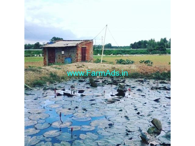 4 acres 5 guntas farm land at prime location Yelhanka