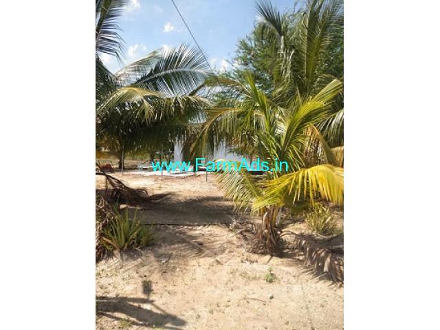 Total acres 214 Acres Coconut Farm for Sale Near Sivakasi