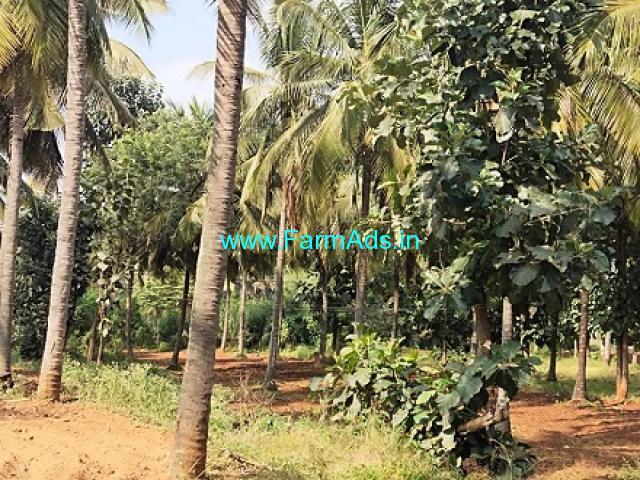 20 Acres Coconut Farm Land for Sale near Holenarasipura