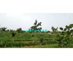 250 Acres Farm Land For Sale In Veligondla