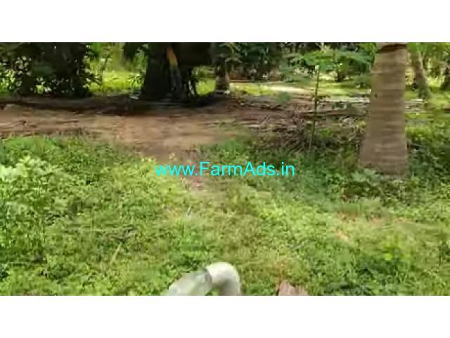 50 Cents Agriculture Land For Sale In Edaikazhinadu