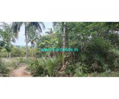 43 Acres Agriculture Land For Sale In Srikakulam