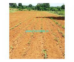 4 acres 24 guntas with 9 guntas Karab farm land for sale in Doddballapura