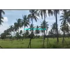 4 Acre Agriculture Land For Sale In BG pura
