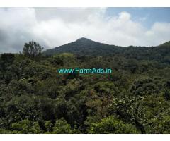 25 acre plain land sale in Mudigere