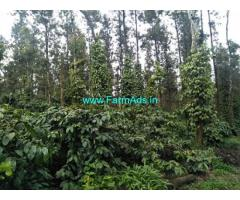 10 acre well maintained Robusta plantation for Sale near Belur