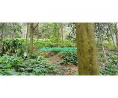197 Cents Farm land For Sale In Pathanamthitta