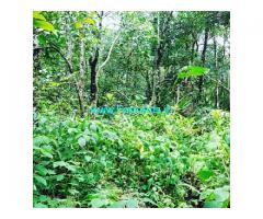 3 acre farm land for sale in Mudigere