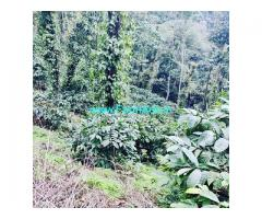 9.5 acre average maintained coffee estate for sale in Chikkamagalur
