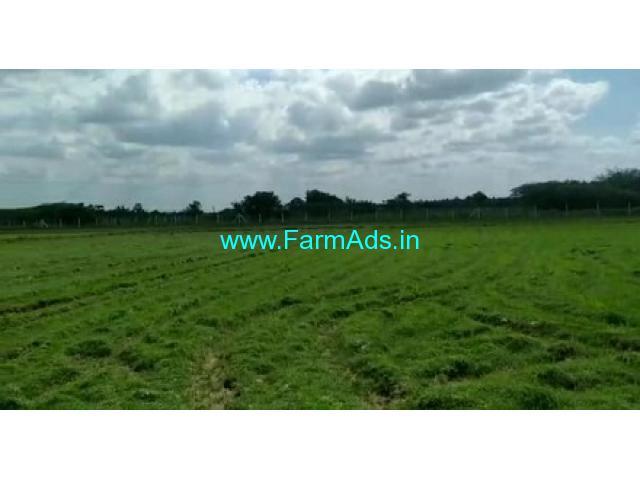 19 Acres Agriculture Land For Sale In Edaikazhinadu