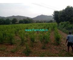 5 Acres Farm Land For Sale In Hiriyur