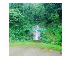 5 acre coffee estate for sale in Chikkamagalur
