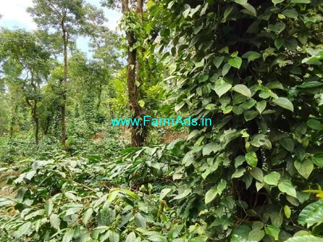 8 Acres Agriculture Land For Sale In Mudigere