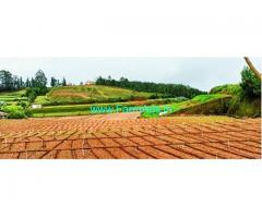 6.5 Acres Farm Land For Sale In Kookal