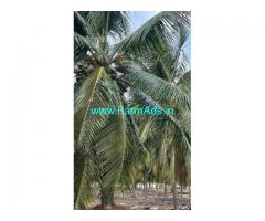 3 Acres Farm Land For Sale In Kudimangalam